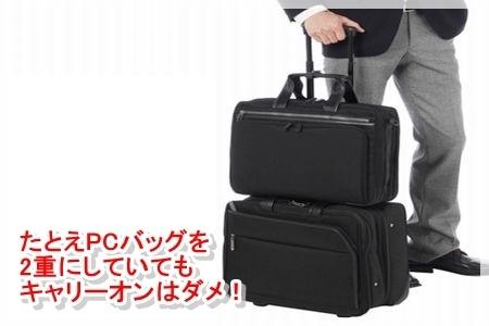 carrybag16.jpg